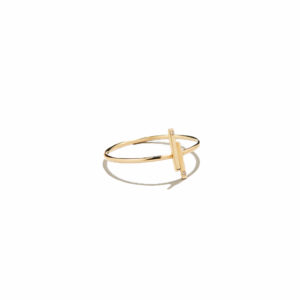Eikosi Dyo Twigs Ring