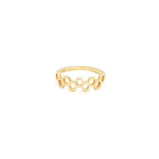 apis-ring1