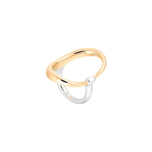 turtle-ring-vermeil-argent